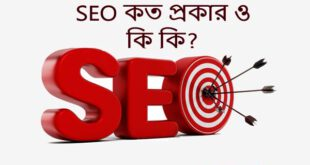 How Many Types Of SEO