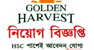 Work from home job of golden harvest info tech