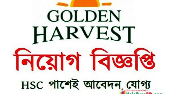 Work from home job of golden harvest info tech