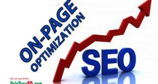 অনপেজ অপটিমাইজেশন কি? অনপেজ অপটিমাইজেশন এ কি কি কাজ করতে হয়? What is on-page optimization? How to do on-page optimization