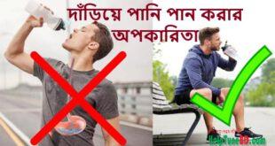 দাঁড়িয়ে পানি পান করার অপকারিতা, Disadvantages of Drinking Water While Standing
