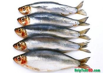 fishes can prevent cancer, মাছ ক্যান্সার প্রতিরোধ করতে পারে